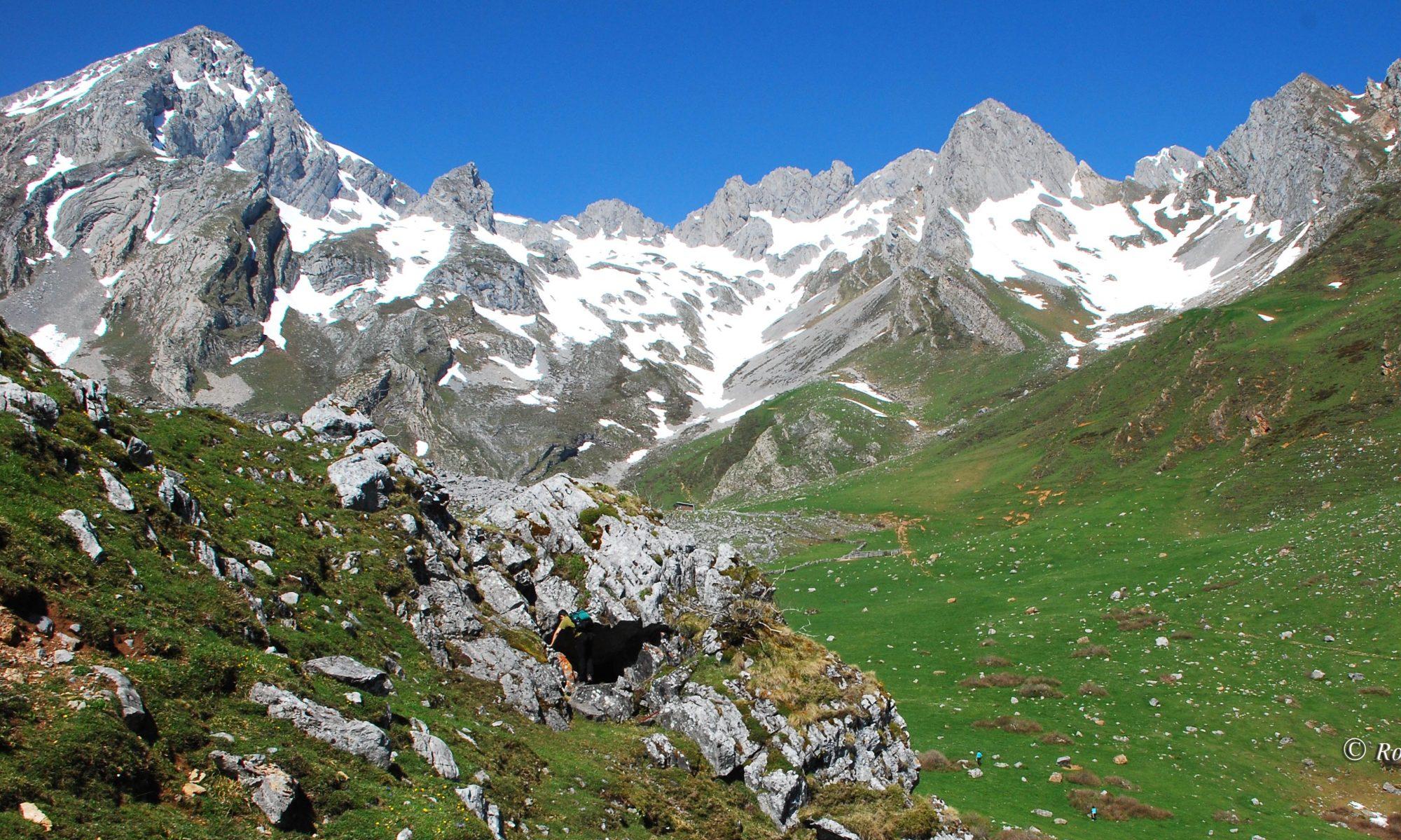 SIED Asturias